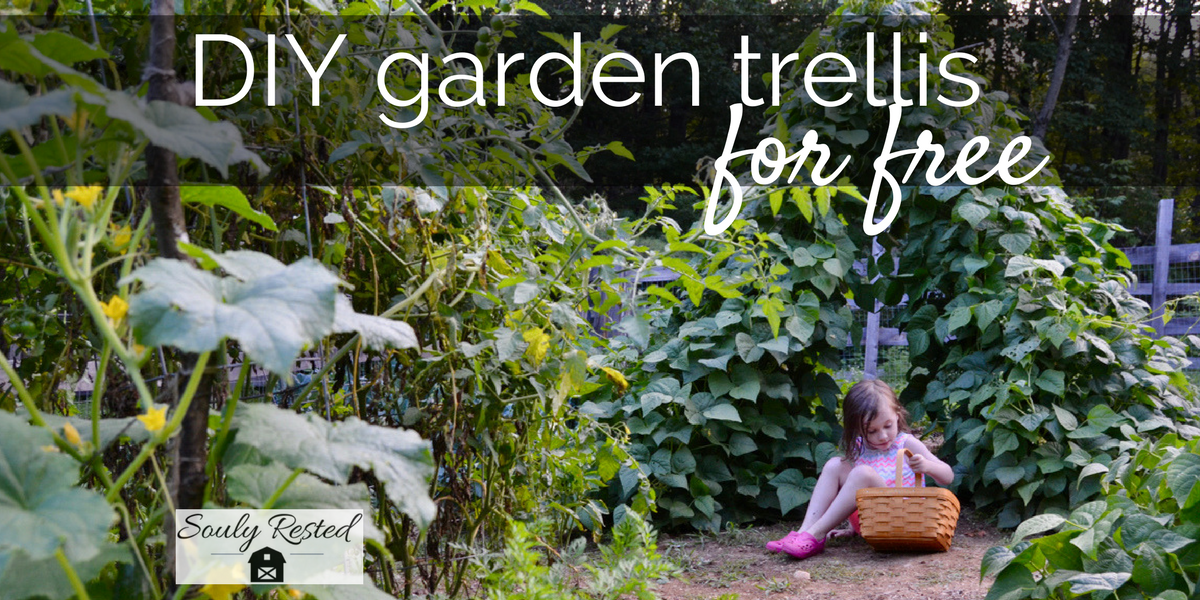 Wanna Make Your Own Garden Trellis For Free Soulyrested